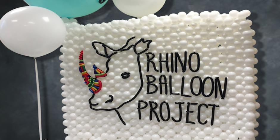 Rhino Awareness
