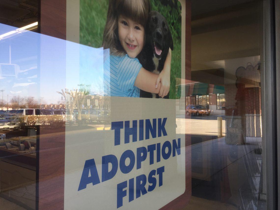 Adopt Definitely Do Not Shop