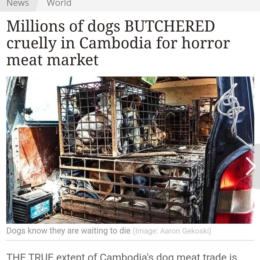Cambodian Horror Story